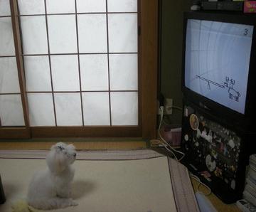 Watch_tv0